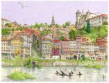 1253big_porto_selvatico_wb