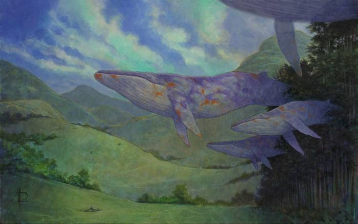«Ardalén / The passage of the whales»